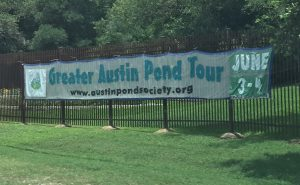 Greater Austin Pond Tour