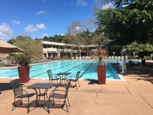 Poolside at Flamingo Hotel in Santa Rosa, California